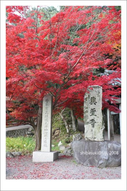 20081129_宇治-97_興盛寺.JPG