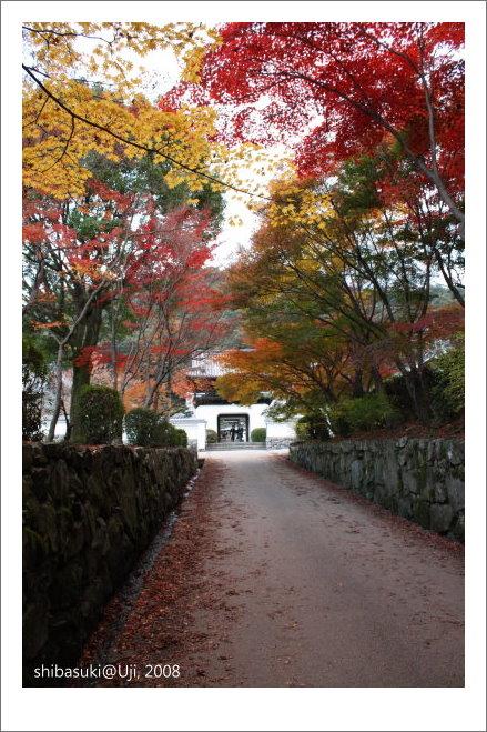 20081129_宇治-101_興盛寺.JPG