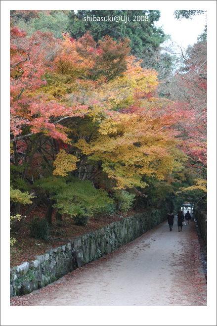 20081129_宇治-103_興盛寺.JPG