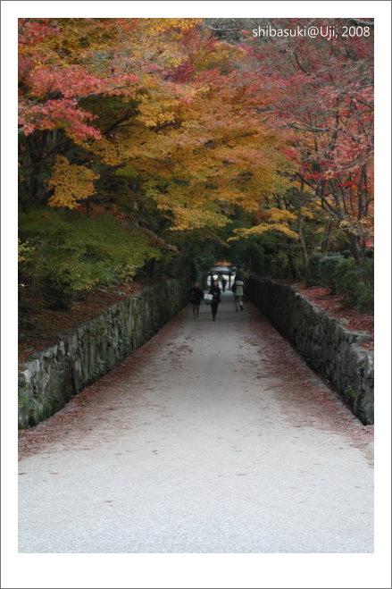 20081129_宇治-115_興盛寺.JPG