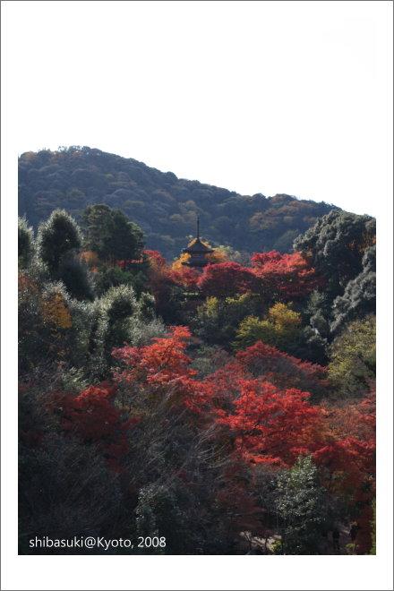 20081130_Kyoto-17_清水寺.JPG