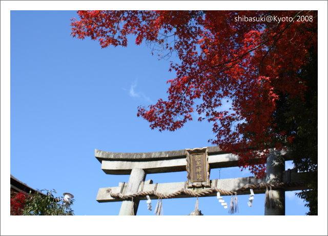 20081130_Kyoto-21_清水寺.JPG