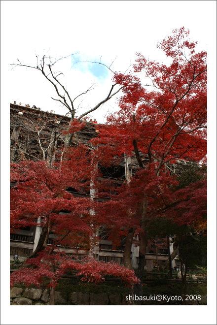 20081130_Kyoto-42_清水寺.JPG