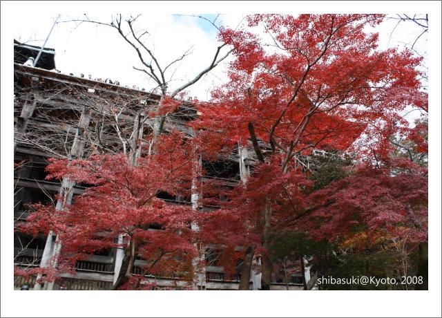20081130_Kyoto-43_清水寺.JPG