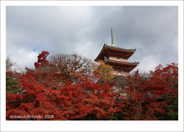 20081130_Kyoto-45_清水寺.JPG