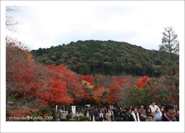 20081130_Kyoto-48_清水寺.JPG