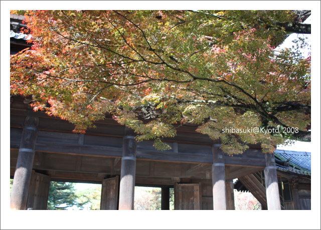20081125_Kyoto-49_南禪寺.jpg