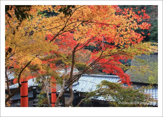 20081126_Kyoto-142_奧嵯峨(鳥居本).jpg