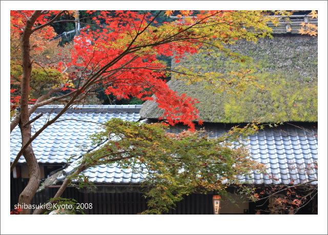 20081126_Kyoto-143_奧嵯峨(鳥居本).jpg