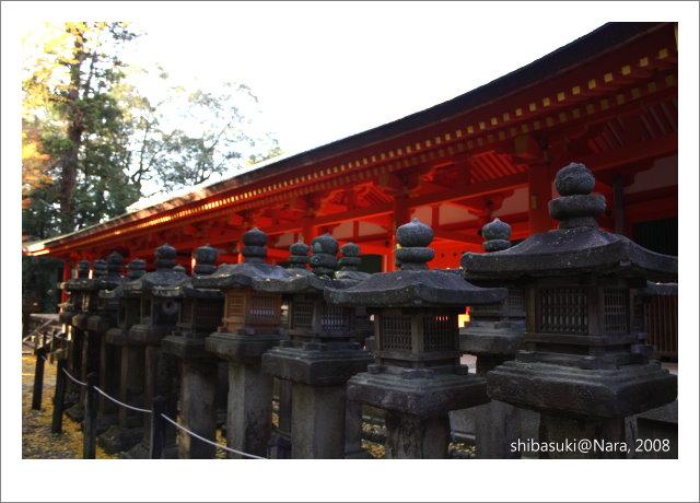 20081128_奈良-117_春日大社.jpg