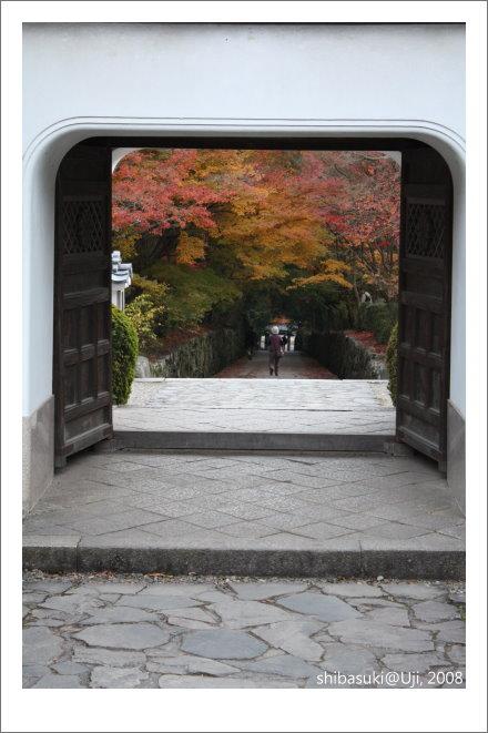 20081129_宇治-112_興盛寺.jpg