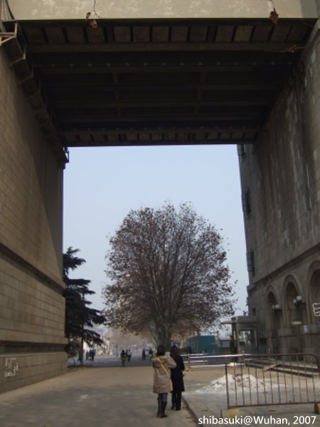 20071219_Wuhan-32_長江一橋.JPG