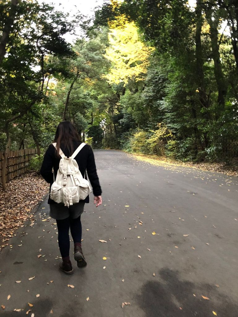 20181129 明治神宮 銀杏_190304_0074.jpg
