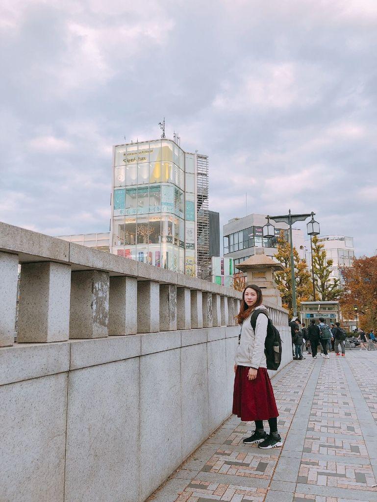 20181129 明治神宮 銀杏_190304_0082.jpg