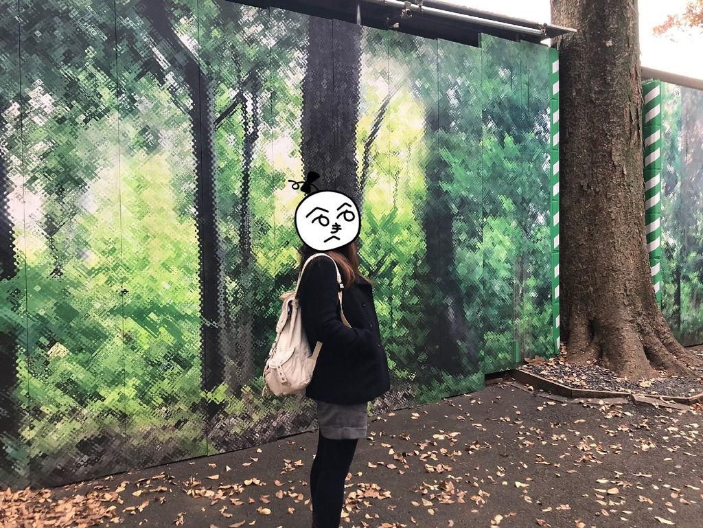20181129 明治神宮 銀杏_190304_0078_副本.jpg