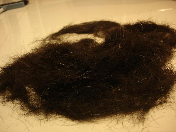 被剪的頭髮