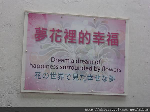 夢花裡的幸福