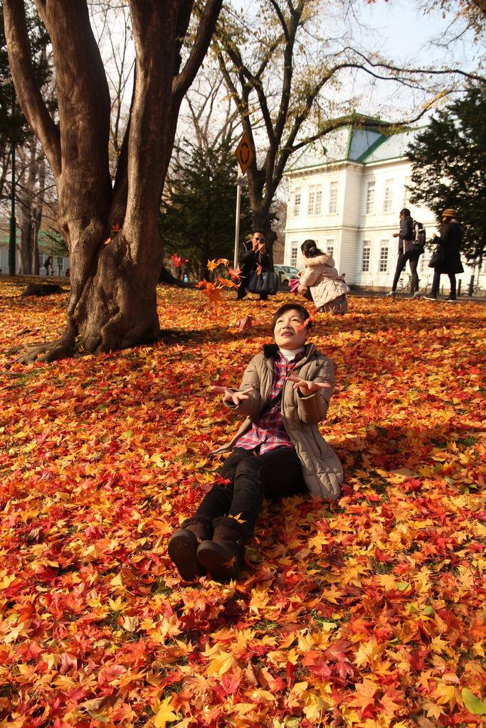 (北海道。札幌)10月來北海道必訪的『北海道大學,銀杏步道』 @ La mode_Bunny小姐愛美麗 :: 痞客邦