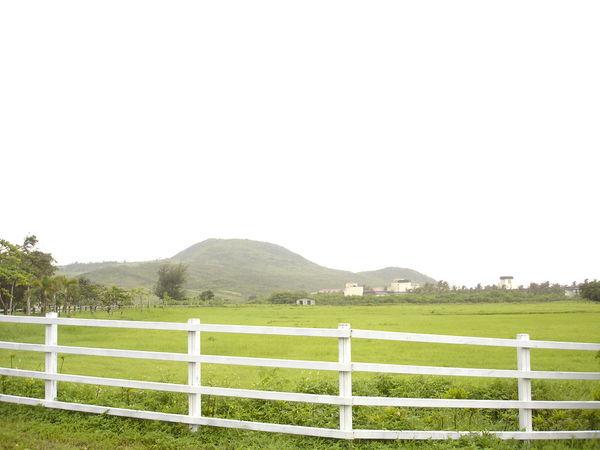 沒有牛的牧場