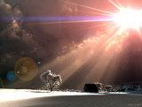 ap_F23_20101029105505403.jpg