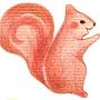 花栗鼠-2