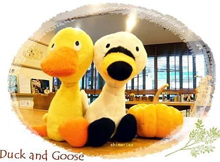 鴨與鵝玩偶
