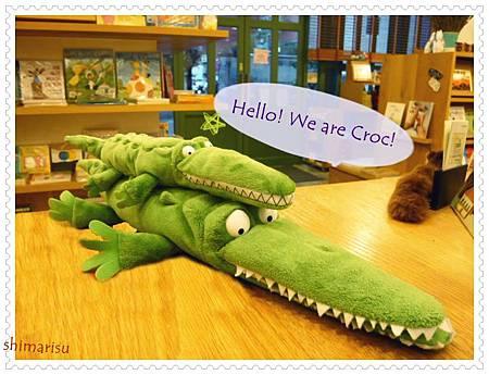 Croc鱷魚系列