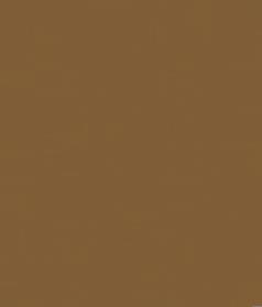 typ1_R
