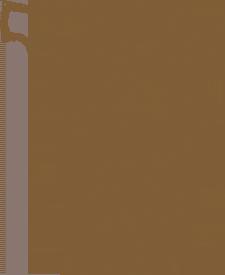 typ1_U