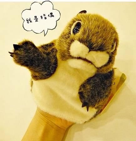 花栗鼠指偶