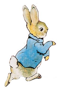 小兔彼得.jpg
