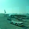搭這台長榮航空直飛北海道