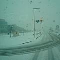 整座城市都是雪白色