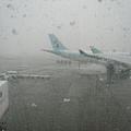 北海道到了~正在下雪