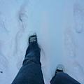 走在雪地裡,千萬不要學我只穿這雙鞋就出門