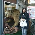 跟假熊來一張