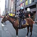 騎馬在開單的警察