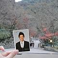金賢重不來台灣,因為他跟我來京都旅行了