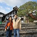 京都怎麼到處都有世界遺產