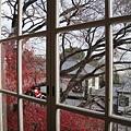 窗戶可以看到神戶的景色