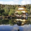 金閣寺,真的是太美了!