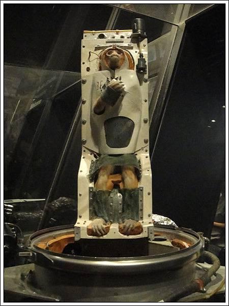 第一個登上外太空的是牠!