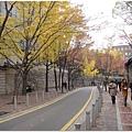 1677993039-人行步道很大.jpg