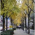 1678000102-美麗的人行道.jpg