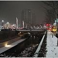 半夜下起雪