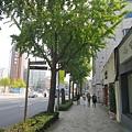 從景福宮漫步到仁寺洞吃午餐