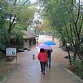 下雨讓兩老也不是很想停留久一些