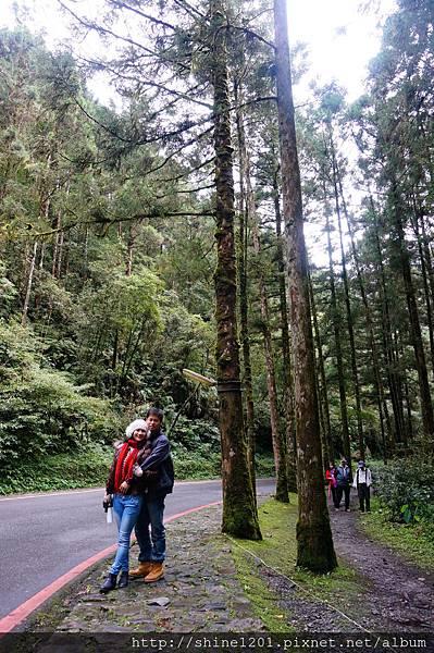 宜蘭旅遊景點  明池森林遊樂園區