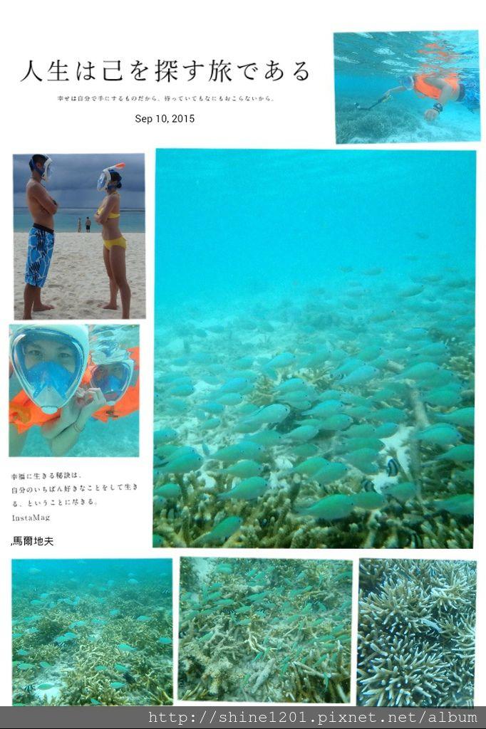 【馬爾地夫蜜月】VELASSARU 薇拉莎露全攻略.珊瑚假期
