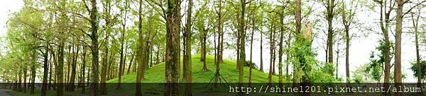 宜蘭羅東景點 羅東運動公園散步輕旅